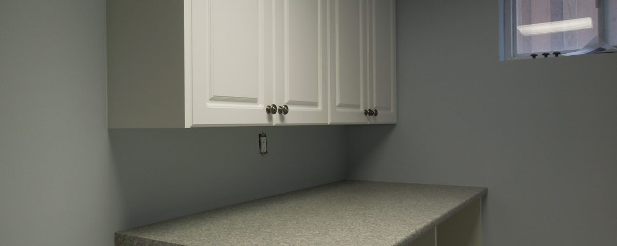 Basement renovation - Counter top and sink